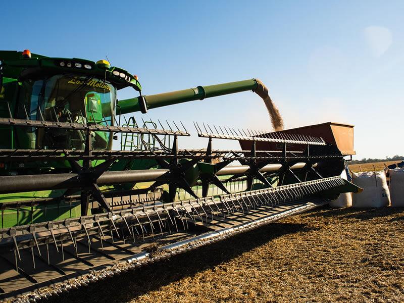 Salvita Alimentos • Agricultural