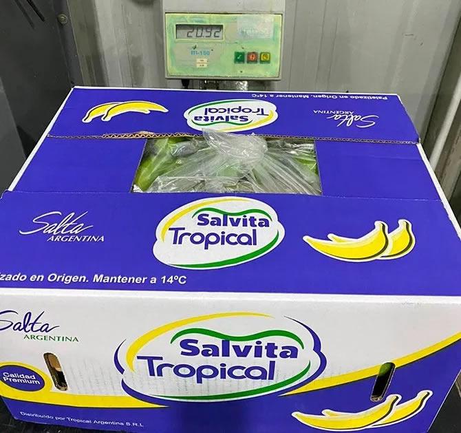 Salvita Alimentos • Una banana nacional que busca competir contra las mejores